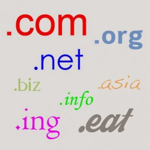 What-Are-The-gTLDs-Generic-top-level-domains